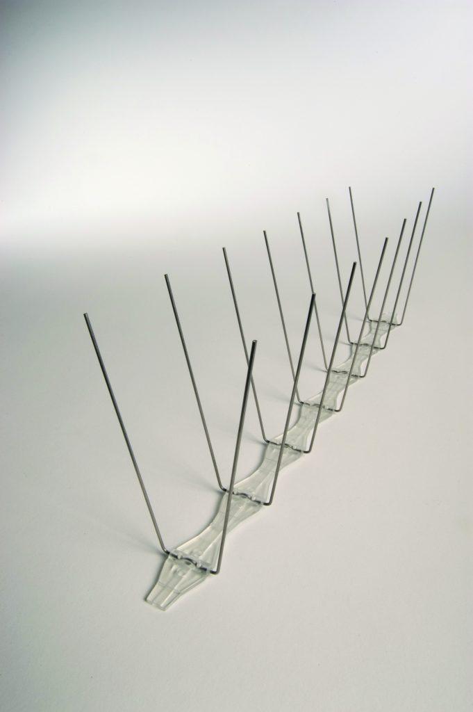 Narrow Stainless Steel Pigeon Spikes By Bird X Envioguard