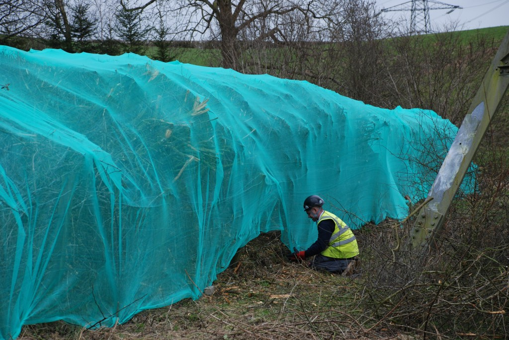 Hedgerow Netting Enviroguard